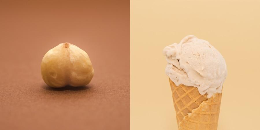 hazelnut-avellana-eleazarlazaro-gelateria-demaestri-ice-cream-900